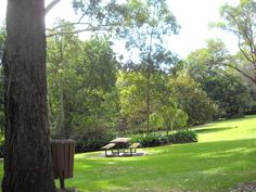 Camellia Gardens, was a Captain Cook Bicentenary project and named after the late Professor E.G Waterhouse, who was an expert on camellias. Parks In Sydney, Park Benches, Naming Ceremony, Picnic Tables, Playgrounds, Camellia, Garden Wedding, Perfect Place, Professor