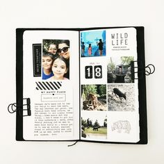 July's Travelers Notebook by mamaorrelli at Studio Calico