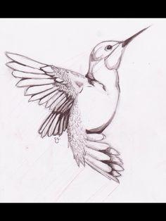Love this hummingbird sketch!