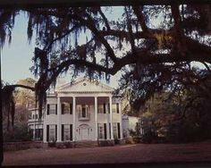 Myrtle Grove Plantation in Savannah, Georgia --- beautiful! Savannah Georgia Homes, Savannah Chat, Georgia Usa, Southern Homes, Southern Style, Southern Charm, Southern Living, Gothic Revival Architecture, Greek Revival Home