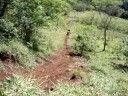 TRILHA FAZENDA REFÚGIO - VACA BARBUDA - http://www.nopasc.org/trilha-fazenda-refugio-vaca-barbuda/
