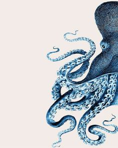 Set of 2 Octopus Prints Blue And White Nautical par NauticalNell
