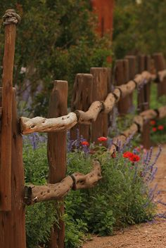 I love this fence!!