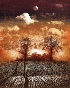 Ian MacCulloch, etching