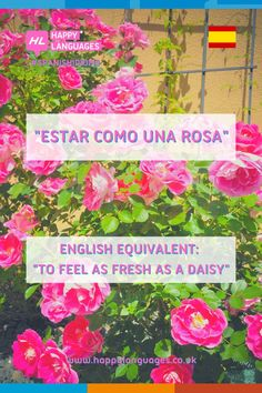 A lovely Spanish idiom to learn: why don't you try using it in a sentence?✏️ Follow the link to read more!
