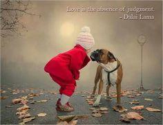 Suspend judgement.