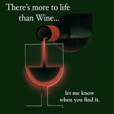 There's more to life than Wine... let me know when you find it.  :)