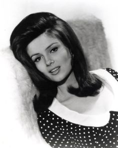 """Pamela Tiffin - Named """"Star of Tomorrow"""" in 1962 by the Motion Picture Herald, a trade paper for theater owners. Vintage Birds, Vintage Ladies, Pamela Tiffin, Dolores Hart, Julie Walters, Great Women, Beautiful Women, Timeless Classic, Classic Beauty"""