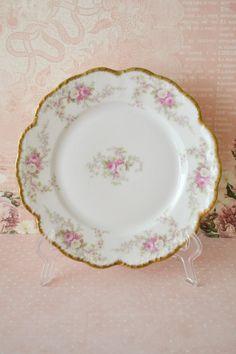 Beautiful Antique Limoges Porcelain Plate