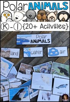Are you looking for a factual unit to introduce polar animals in your kindergarten and first grade classroom? Our polar animal activities unit is for you. Animal Activities, Kindergarten Activities, Kindergarten Rocks, Kindergarten Winter Animals, Winter Activities, Kindergarten Writing, Preschool Themes, Preschool Classroom, Preschool Worksheets