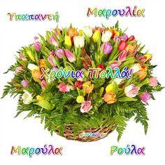 02 Φεβρουαρίου 🌹🌹🌹 Σήμερα γιορτάζουν οι: Υπαπαντή,Μαρουλία,Μαρούλα,Ρούλα - Giortazo.gr Plants, Plant, Planets