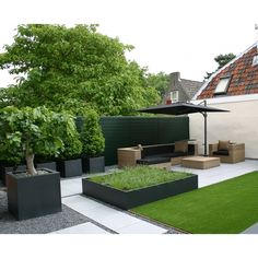 Attending Modern Landscaping Pots Can Be A Disaster If You Forget These Seven Rules Backyard Retreat, Backyard Patio, Backyard Landscaping, Back Gardens, Small Gardens, Outdoor Gardens, Simple Landscape Design, Garden Troughs, Terrace Garden
