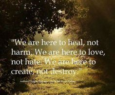 """We are here to heal, not hate. We are here to love, not hate. We are here to create, not destroy"" Social good quote to inspire community action! Great Quotes, Quotes To Live By, Inspirational Quotes, Awesome Quotes, Motivational Quotes, Daily Quotes, Yoga Quotes, Funny Quotes, T 62"