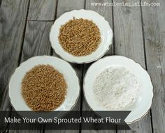 How to make your own sprouted wheat flour  www.wholesimplelife.com  #sproutedflour