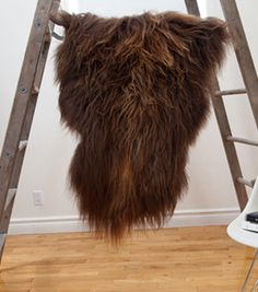 16b44fa41742 Black Sheep (White Light) sheepskins. Put one at the foot of your bed