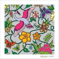 Official website of Colorfy - coloring book for adults. Free app available for iPhone, iPad and Android Coloring Book App, Coloring Apps, Colouring Pages, Adult Coloring, Colorful Paintings, Animal Paintings, Colorfy App, Artist Trading Cards, Beautiful Birds