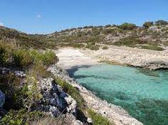 sant elm beach cove - Google Search