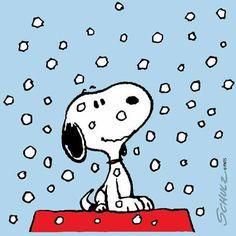 Snowflakes. ❄️