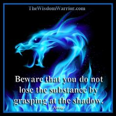 Beware that you do not lose the substance by grasping at the shadow. Aesop  Blue fire dragon