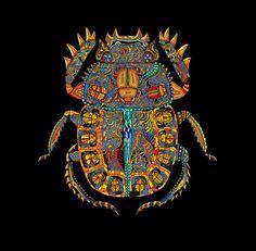 escarabajooo <3