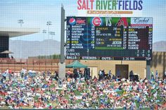 5 Tips to Enjoy Spring Training Baseball in Arizona.  A great family spring break activity!