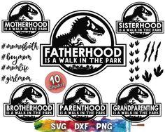 Jurrassic Park, Silhouette Vinyl, Vinyl Designs, Shirt Designs, Silhouette Studio Designer Edition, Star Work, Glass Blocks, Party Printables, Make And Sell
