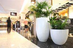 Martin Kellock Pots & Planters || Westfield Bondi Project Westfield Shopping Centre, Shopping Center, Affair, Planter Pots, Projects, Collection, Ideas, Shopping Mall, Blue Prints