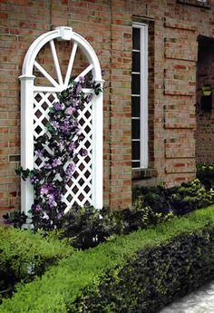 I love brick houses... almost as much as I love this trellis! And the purple flowers.