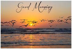 good morning images | Good Morning Nature Wishes, Stylish Morning Cards