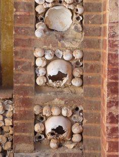 Cascas de ovos