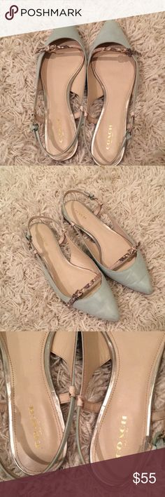 Coach flats Coach soft mint green or light blue flat with gray snakeskin strap. Silver hardware on buckles. Great condition. Good for work Coach Shoes Flats & Loafers