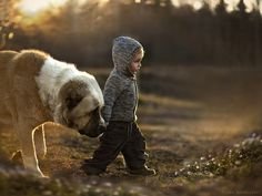 animal children photography elena shumilova 18 Russian Mother Takes Magical Pictures of Her Two Kids With Animals On Her Farm Animals For Kids, Farm Animals, Cute Animals, Fluffy Animals, Animals Beautiful, Love My Dog, Puppy Love, Mans Best Friend, Best Friends