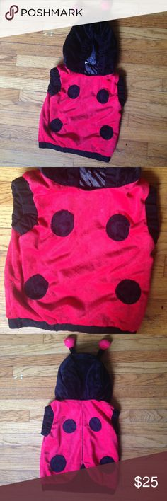 Kids lady bug costume Ladybug Halloween costume for kids size 2-4T. Great condition! I also have a Spider-Man, transformer, horse/cowboy/cowgirl costume, turtle, ladybug, spider, firefighter, puppy dog, Esmeralda, gypse, Jesse from toy story, scooby doo, spongebob, cinderella, minion and zebra costume in my closet as well!                                                       ❗️PRICES WILL GO UP AT THE BEGINNING OF OCTOBER❗️ Old Navy Costumes Halloween