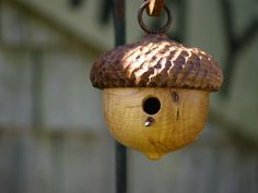 Woodland Acorn Birdhouse  Decorative Birdhouse door CattailsWoodwork