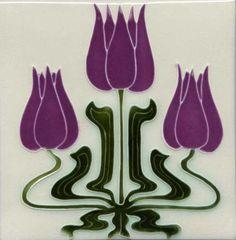Mackintosh tulips