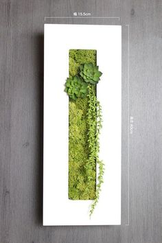 Make with white foam core board faux succulents & reindeer moss (use box for ba Moss Garden, Garden Art, Garden Design, Moss Wall Art, Moss Art, Faux Succulents, Succulents Garden, Plant Art, Plant Decor