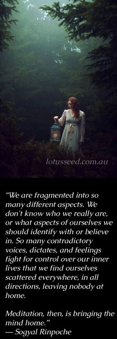 Sogyal Rinpoche Buddhist Zen quotes by lotusseed.com.au