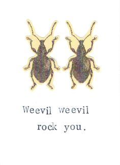 Weevil Weevil Rock You Card | Funny Nerdy Pun Science Insect Beetles Weird Gothic Humor