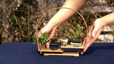 インテリアにするとオシャレ!ミニミニ盆栽は一体どうやって作るのか?