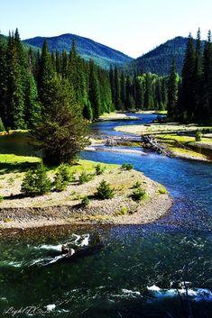 Chinook Pass, Washington, USA
