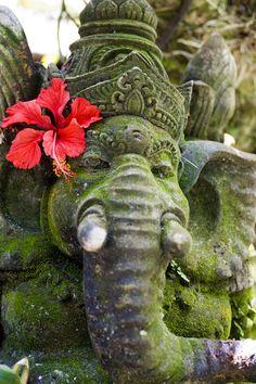 Photo Bali Ganesh by Pratyush Lal on 500px