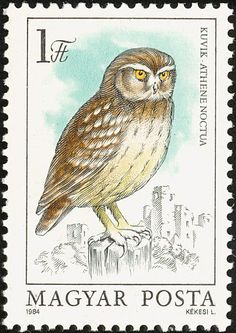 Little Owl stamp - Hungary Sell Stamps, Stamp Catalogue, Postage Stamp Art, Stamp Printing, Little Owl, Vintage Stamps, Owl Art, Stamp Collecting, Drawings