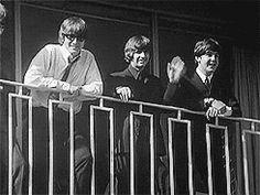 that was freakin' transcendental Paul McCartney