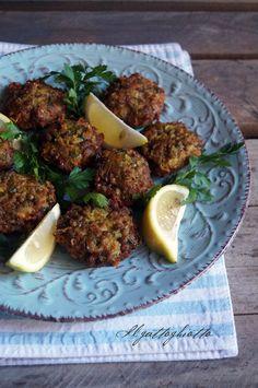 il gattoghiotto: Crocchette orientali con manzo e lenticchie