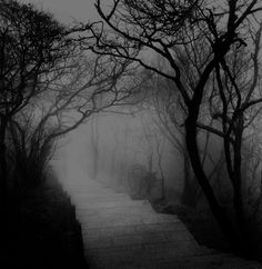 We're walking down a dark road a road I like to call darkness road...