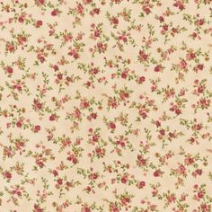 EWK-8887-14 from Tiny Roses: Robert Kaufman Fabric Company