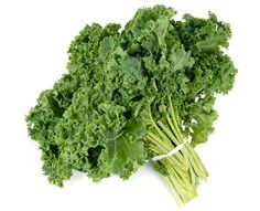 Want how to cook kale kale? We take you through the ins and outs of one of the most nutritionally dense foods on the planet.