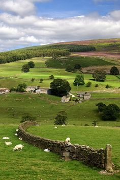 Handmade stone fences define the landscape in many parts of Britain
