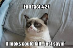 tard grumpy cat | quickmeme »