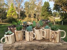 Wood Planters, Flower Planters, Garden Planters, Flower Pots, Herb Garden Design, Garden Deco, Backyard Projects, Garden Projects, Yard Art